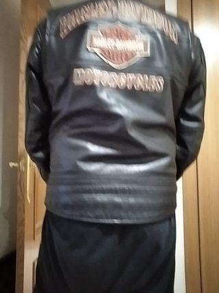 Harley Davidson chaqueta