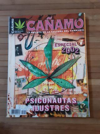 revista caña5