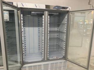 armario de congelacion 2 puertas