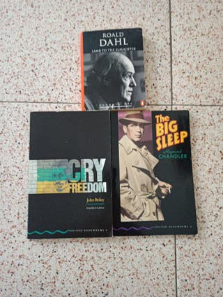 lote libros/inglés adapatados nivel correspondient