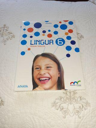 libro Lingua 6 primaria SIN ESTRENAR de Anaya