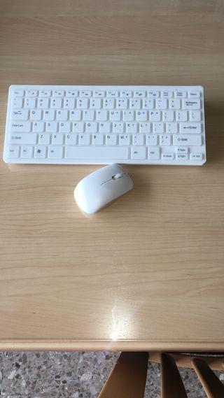 Teclado y ratón inalámbrico