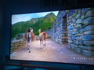 "Tv philips 55"" smart TV 4k"