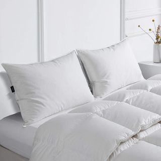 Juego de dos almohadas 30% plumón ganso blanco