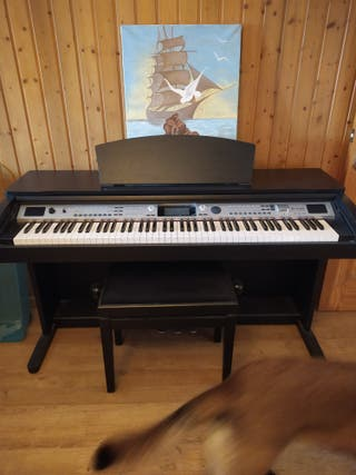 Piano Thomann dp85,con banqueta piano, impecable