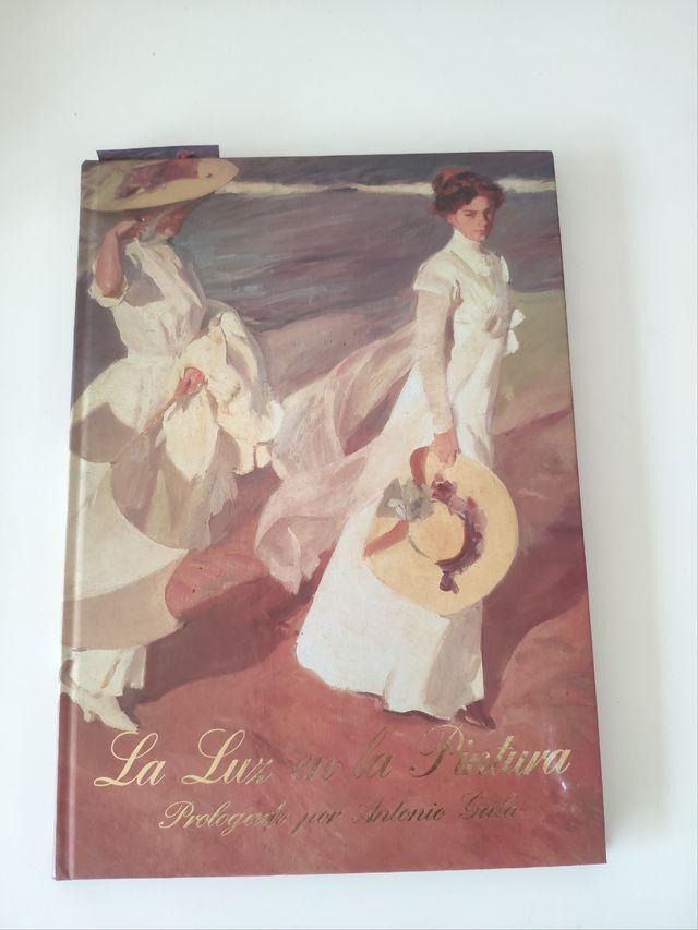 libro: la luz en la pintura