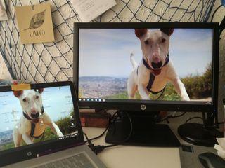 Monitor -pantalla ordenador