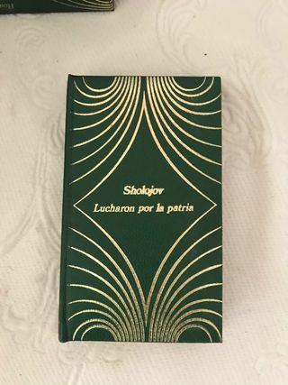 Libro Sholojov Lucharon por la patria