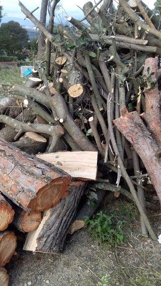 troncos de leña