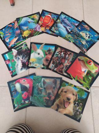 postales animales 3D