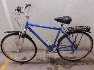 Bicicleta Jamis Citizen talla grande