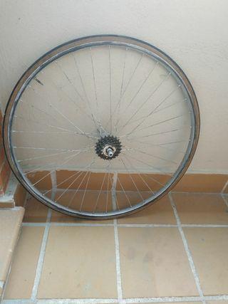 Ruedas bicicleta de carretera antigua