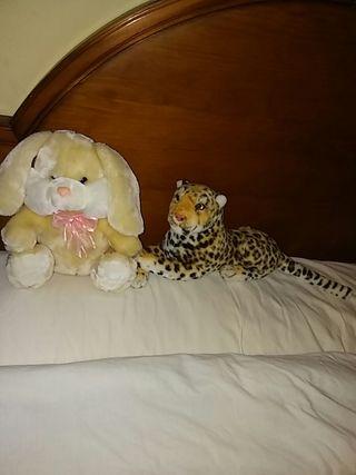 conejo tigre