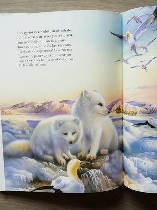 Animales en la naturaleza