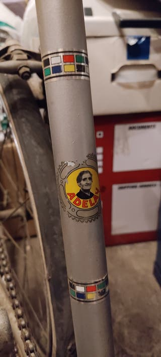 Bicicleta Adelay