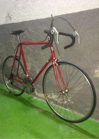 Bicicleta Macario t.XL / 62cm