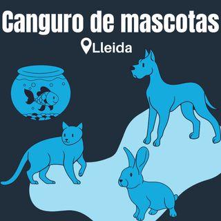 Canguro/Cuidador de perros y mascotas