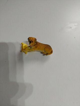 perro casa de muñecas