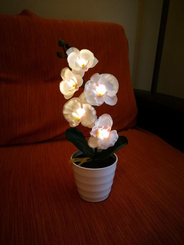 Planta artificial con iluminación