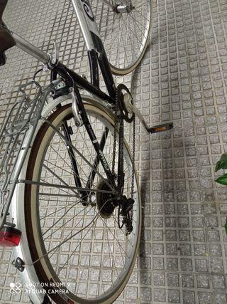 "Bicicleta Paseo 28"""