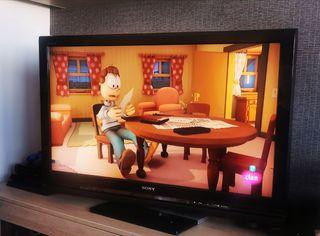 """televisión 40 """"Sony bravía"""