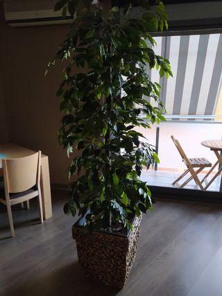 Planta artificial 2M