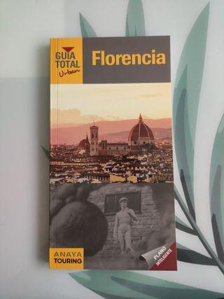 Guia total Florencia