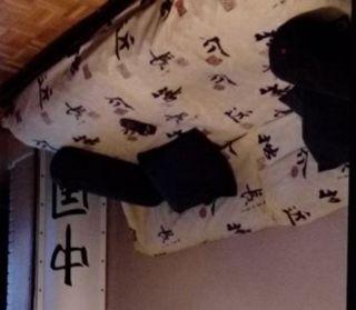 Sofa cama japonés matrimonio