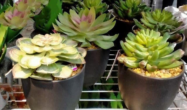 Centros y macetas con plantas artificiales