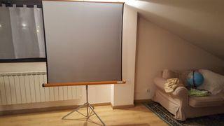 pantalla de proyeccion con tripode