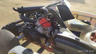 Motor kart rotax dd2 evo