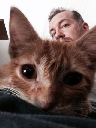 Paseador/cuidador de perros, cuidandor de gatos
