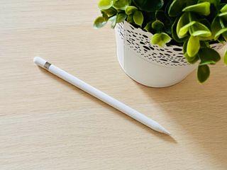 Apple Pencil para iPad + extras