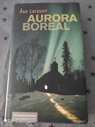 Aurora boreal de Asa Larsson