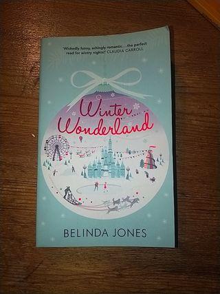 "Libro ""Winter Wonderland"" en ingles"
