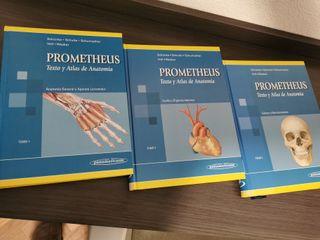 libros anatomía Prometheus