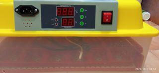 Incubadora automática 24