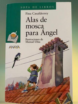 Alas de mosca para Ángel