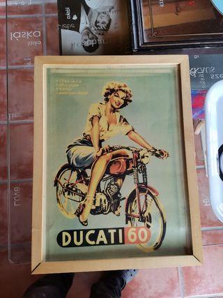 cuadro moto y bandeja
