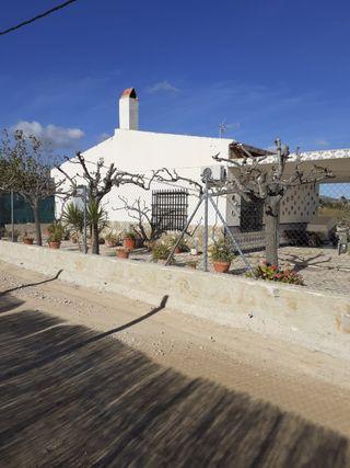 Casa de campo + Parcela en Novelda