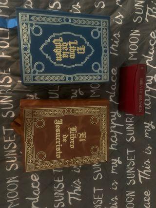 LIBROS RELIGIOSOS DE JESUCRISTO Y LA VIRGEN