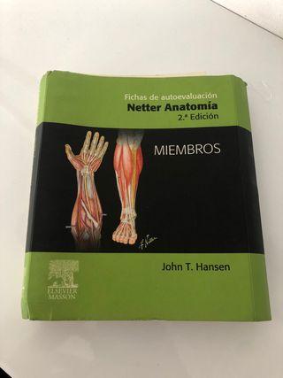 Netter Anatomia Fichas Autoevaluación