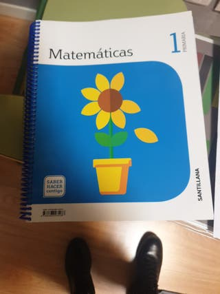 libro de matemáticas 1 primaria santillana