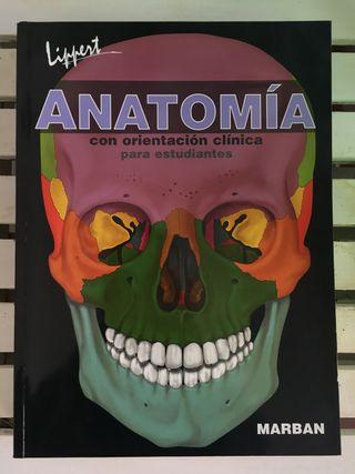 Anatomía-Lippert con orientación clínica