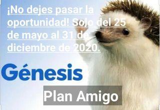 Plan tráete un amigo Genesis