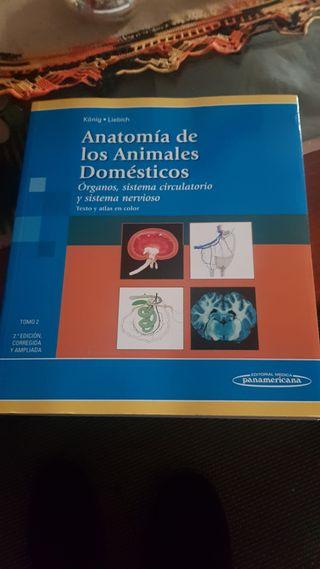 anatomía de animales domésticos vol 2