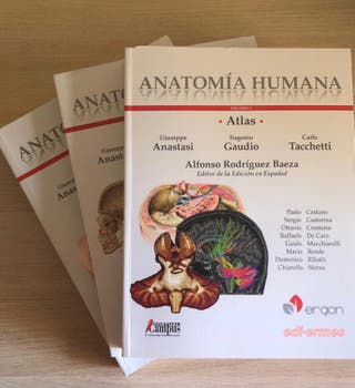 ATLAS ANATOMÍA ERGON (3 TOMOS)