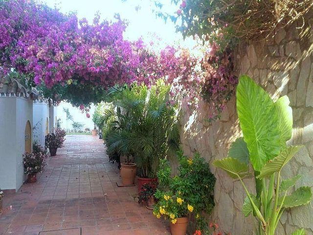 Casa en alquiler en Estepona Oeste - Valle Romano - Bahía Dorada en Estepona (Sayalonga, Málaga)