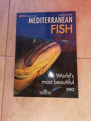 Libro Mediterranean Fish - Peces del Mediterráneo