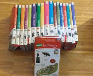 colección de libros de turismo